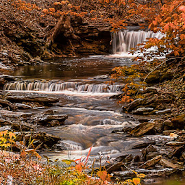 Fall Cascades by Eugene Linzy - Landscapes Waterscapes ( autumn, cascade, fall, creek, waterfall, autumn colors, kentucky )
