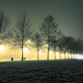 Sunday evening by Goran Gašparac - City,  Street & Park  Street Scenes ( calm, light trail, bench, spooky, street, lamps, foggy, winter, cold, sequence, sunday, dark, trees, city lights, night, walking trail, evening, alone, street lights )