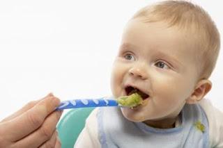 Trẻ dưới 1 tuổi có ăn được rau chùm ngây?