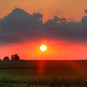 Country Sunset by Alex Heimberger - Landscapes Sunsets & Sunrises ( sunset, landscape, country )