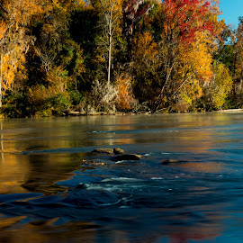 Congaree River Sunrise 3 by Jonathan Wheeler - Landscapes Waterscapes ( columbia sc riverfront, congaree river, fall foliage, reflections, sunrise )