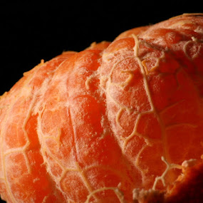 by Joseph Quartson - Food & Drink Fruits & Vegetables ( orange, fruit, citrus, veins, close up )
