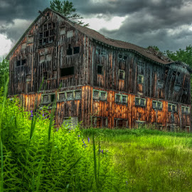 The Old Barn by Chris Cavallo - Buildings & Architecture Decaying & Abandoned ( field, clouds, maine, barn, cloudy, flowers, decay, abandoned )