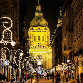 Bazilika at Christmas by Péter Nagy - Public Holidays Christmas ( budapest, church, xmas, christmas, holidays, night )