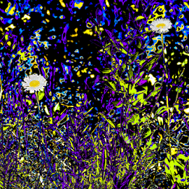 Psychedelic Abstract Flowers by Julie Wooden - Digital Art Abstract ( abstract, wildflowers, partly cloudy, painted canyon, north dakota, purple, green, white, yellow, landscape, medora, nature, blue, theodore roosevelt national park, outdoors, digital art, psychedelic, daises, summer, psychedelic abstract flowers, scenery, flowers, badlands, black,  )