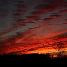 Sunset by David Vanveen - Landscapes Sunsets & Sunrises ( amazing, sky, sunset, hd, sunrise )