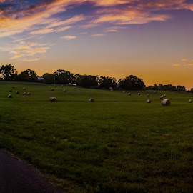 Sunset Pano by Zach Boudreaux - Landscapes Sunsets & Sunrises ( colorful, sunset, beautiful, summer )
