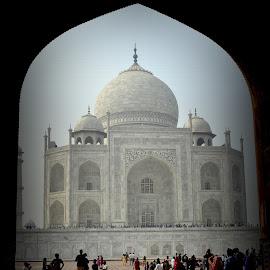the tajmahal india by Parvesh Rana - Buildings & Architecture Public & Historical