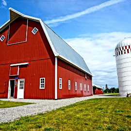 Big Red by Barbara Brock - Buildings & Architecture Other Exteriors ( red, red barn, barn, farmhouse, farming )