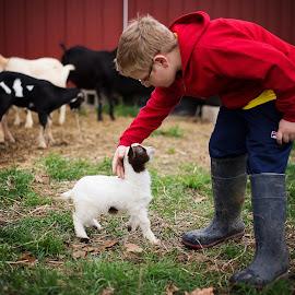 Baby goat by K C - Babies & Children Children Candids