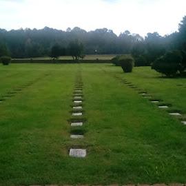 by Christopher Harris - City,  Street & Park  Cemeteries ( cemetery, grave, gravestone, historic, graveyard )