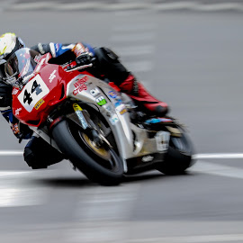 Motorcycle GP - Jamie Hamilton by Renato Marques - Sports & Fitness Motorsports ( roadracing, honda, 2014, jamie hamilton, macau gp, motorcycle, macau, race )