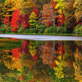 Fall Reflections by Ernie Page - Landscapes Waterscapes ( color, fall, reflections, waterscapes, fall color,  )