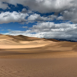 Dunes I by Max Moorman - Landscapes Deserts