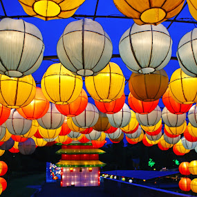 Lampion by Mulawardi Sutanto - City,  Street & Park  Night ( park, lampion, night, colorfull, travel )