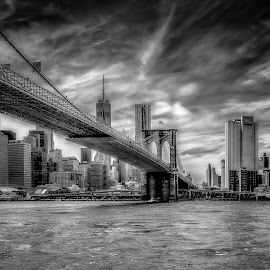 The One and Only by Linda Karlin - Black & White Buildings & Architecture ( b&w, brides, nyc, architecture )