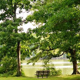 Fox River View by Beth Bowman - City,  Street & Park  City Parks (  )