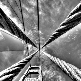 Steel Cables by DE Grabenstein - Black & White Abstract