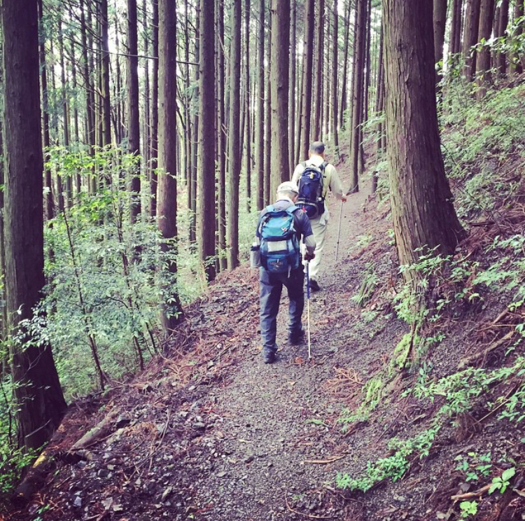 Elderly hikers on the Kumano Kodo