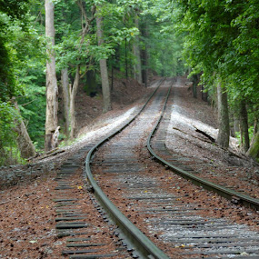 Stone Mountain Train Ride by Beth Bowman - Transportation Railway Tracks (  )