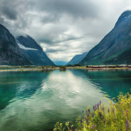 Travel in Norway by Kjersti Skistad - Landscapes Travel ( mountains, nature, hdr, colors, sea, sunndalsøra, travel, landscape, norway, fjord )