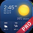 weather forecast pro