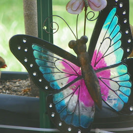 butterfly by Sandy Stevens Krassinger - Artistic Objects Other Objects ( bird, butterfly, cardinal, blue, yard ornament, pink )