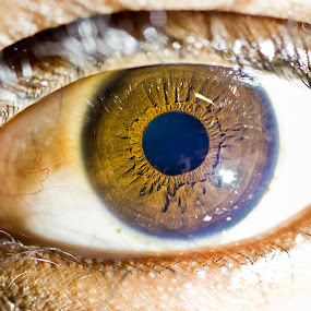 Le Eye by James Realmwalker Johansson - People Body Parts ( macro, dark, intense, brown, eye )