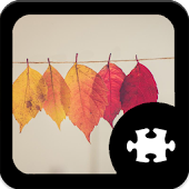Game Fall Jigsaw Puzzle apk for kindle fire