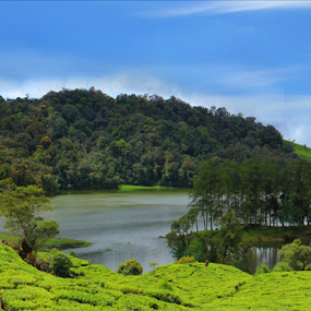 Patenggang Lake by Budiana Yusuf - Landscapes Mountains & Hills ( indonesia, lake, bandung )