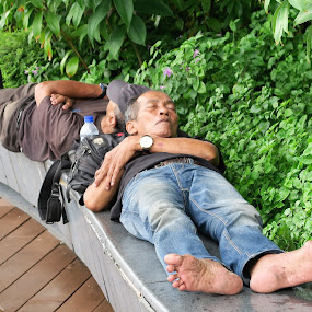 Morning Nap by Dennis  Ng - People Street & Candids (  )
