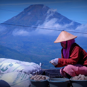 Dieng Farmer by Niko Wazir - News & Events World Events