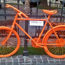 Orange Bicycle by Dobrin Anca - Transportation Bicycles ( orange, street, brasov, wonderful, bicycle,  )