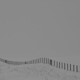Snowblind. by Drake Reed - Landscapes Prairies, Meadows & Fields
