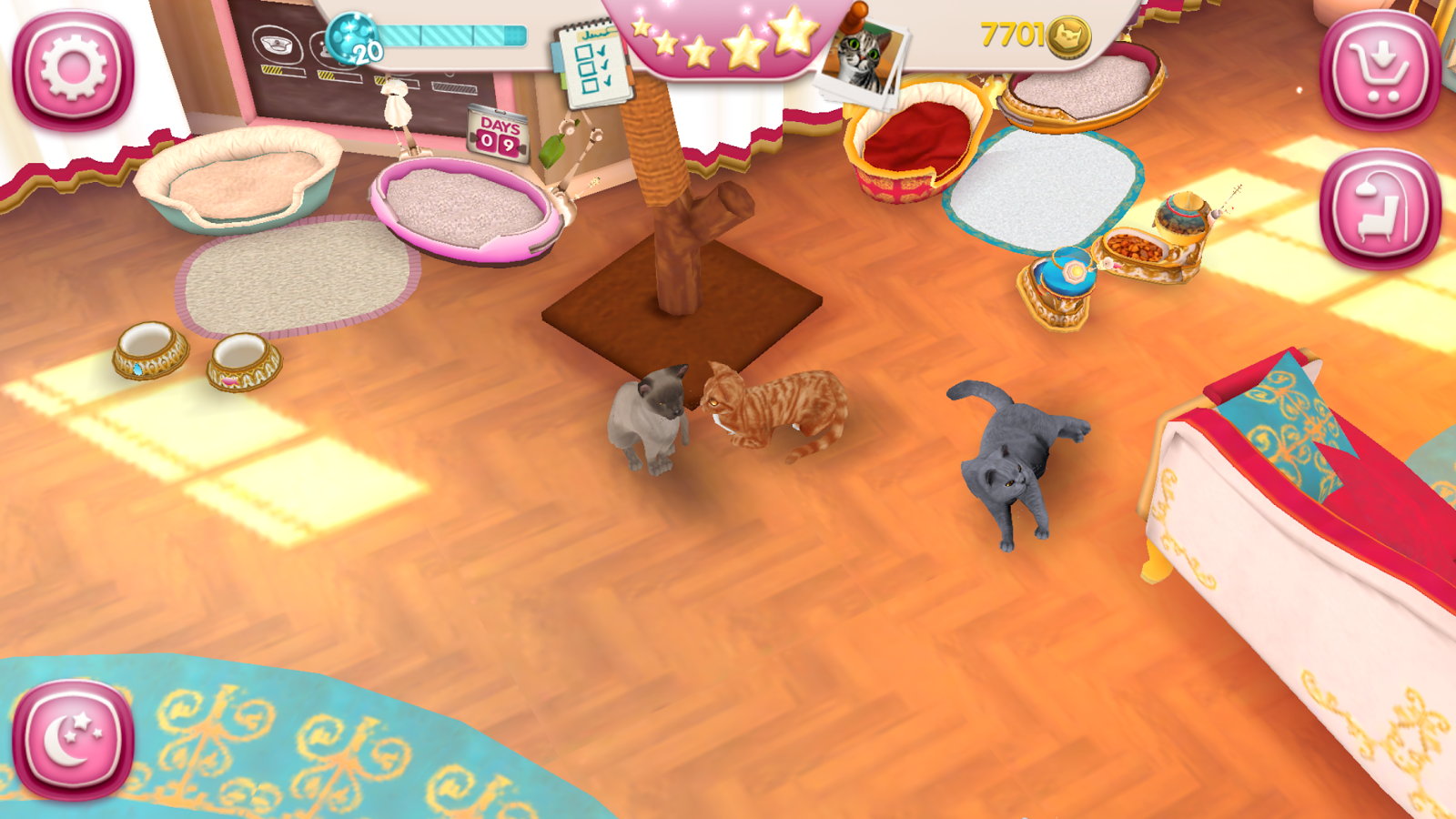 CatHotel - Hotel for cute cats Screenshot 15