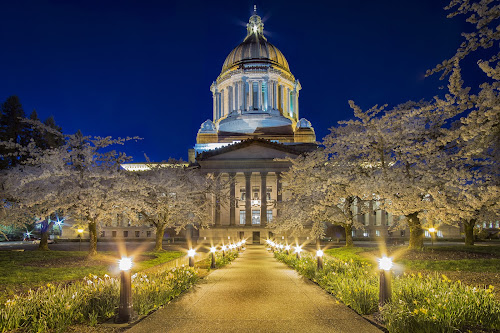 Twilight Capitol by Scott Wood - Buildings & Architecture Public & Historical ( bluehour, sony, washington, building, pnw, twilight, nighg, a6000, trees, architecture, capital, olympia )