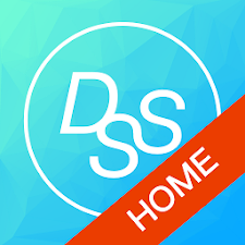DSS Home System 2.0