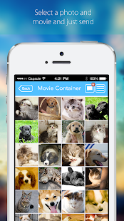 Movie Container Plus - screenshot