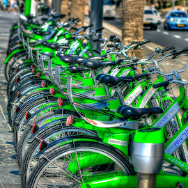 telaviv by Joel Adolfo    - Transportation Bicycles ( bicycles, transportation )