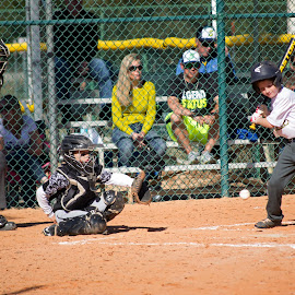 Catcher by Marie Johnson - Novices Only Sports ( catcher )