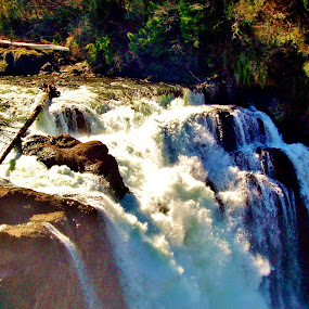 Waterfall  by Sara Swanson - Travel Locations Landmarks