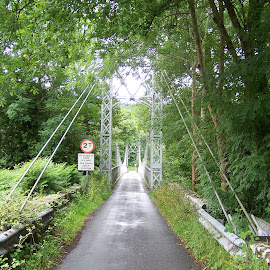 Suspension bridge by Jenny Noraika - Buildings & Architecture Bridges & Suspended Structures ( green, stone, bridge, wall, suspended )