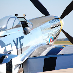 Dakota Kid Airplane by Elizabeth Robison - Transportation Airplanes ( plane, dakota kid, propellor, p-51 mustang, airshow )