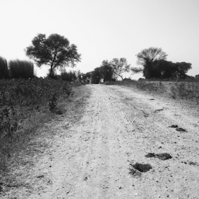 Rural road by Rahul Kumar Meena - Black & White Street & Candid ( black and white, india rural road, nature up close, road, street photography )