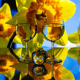 Daffodils by Lisa Hendrix - Artistic Objects Other Objects ( reflection, blue sky, petals, apple, artistic, wine glasses, flower )