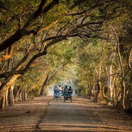 by Sanjay Nagaonkar - Landscapes Travel