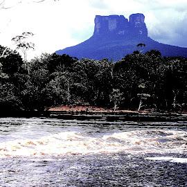Ayun Tepui, Venezuela by Gyan Fernando - Landscapes Mountains & Hills ( angel falls, venezuela, mountain, ayun tepui, waterscape, 2005, gyan fernando, travel, landscape, river )