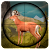 Safari Wild Deer African Jungle Hunting 3D Game file APK Free for PC, smart TV Download
