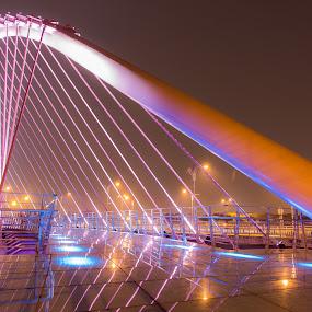 Lovers' Bridge by Ryusuke Komori - Buildings & Architecture Bridges & Suspended Structures ( taiwan, pink, night, bridge )