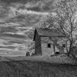 House on the Hill by LINDA HALLAUER - Black & White Buildings & Architecture